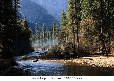 View along the merced river in Yosemite national park