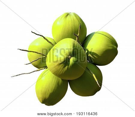 Cluster of fresh green coconuts isolated on white background