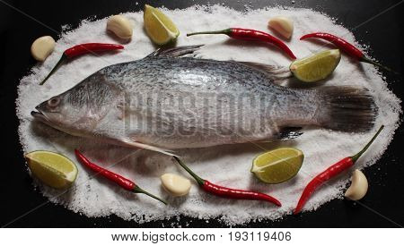 sea bass,fresh sea bass fish lay down on salt plate with garlic lime and red chilli