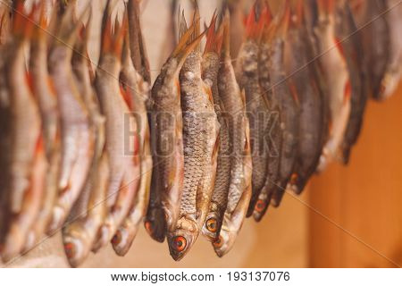 dried fish Rudd on a wooden background in a Sunny day
