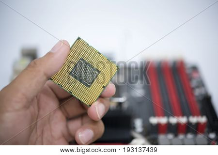 Hand Holding Cpu Show  The Ic Surface And Have Motherboard Open Socket Mount For Cpu Isolated On Whi