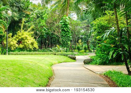 Beautiful Green Park With Winding Path