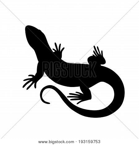 Black isolated silhouette of lizard on white background