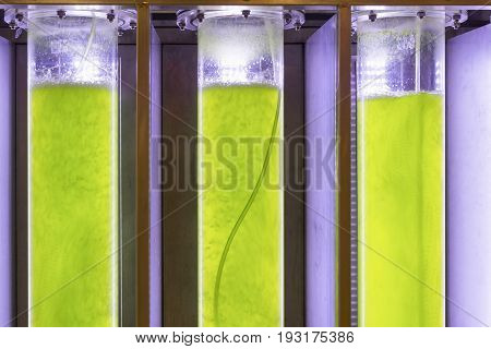 Photobioreactor in lab algae fuel biofuel industry Algae fuel or algal biofuel is an alternative to fossil fuel that uses algae as its source of natural deposits