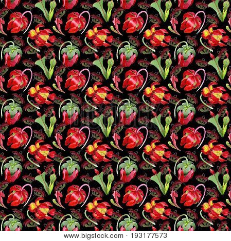 Wildflower Sarracenia flower pattern in a watercolor style. Full name of the plant: Sarracenia Aquarelle wild flower for background, texture, wrapper pattern, frame or border.