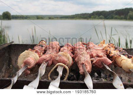 Man Cooking Marinated Shashlik, Lamb Meat Grilling On Metal Skewer, Close Up