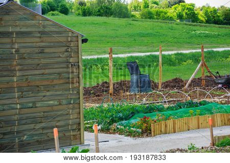 Ecological Town Garden With Green Plantation Growing