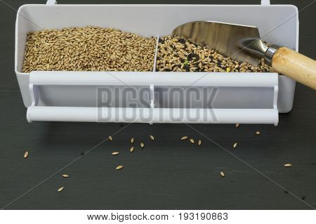 Food for birds, seed mixture two-compartment bird feeder, one compartment with canary seed, the other with seed mixture