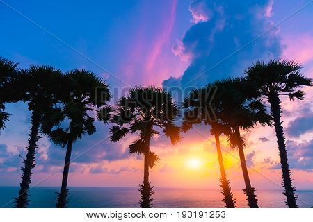 Silhouette coconut palm trees behind beautiful beach with sunset sky at Laem Phrom Thep Cape the most famous tourist attraction in Phuket province Thailand.