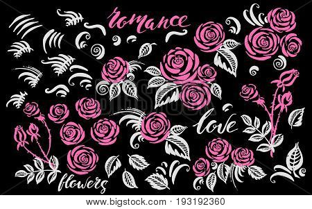Hand drawn rose flowers bouquetes leaves and decor elements. Floral set in pink and white colors.