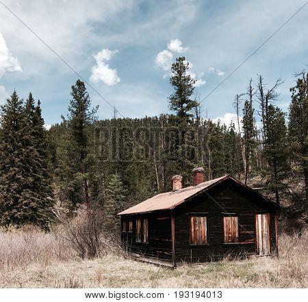 amazing rustic cabin deep and hidden in the woods