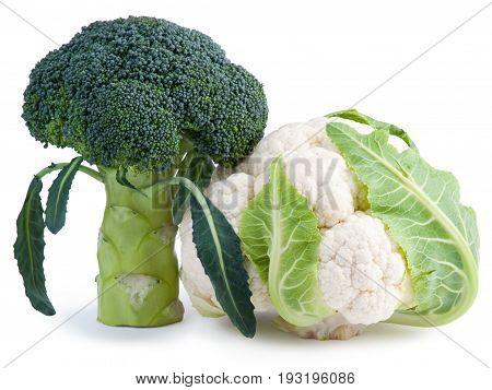Ripe Broccoli and Cauliflower isolated on white background