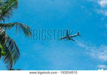 Langkawi, Malaysia - 4th May 2017: Trees framing an aeroplane flying in a bright blue summer sky. Perfect as a travel image