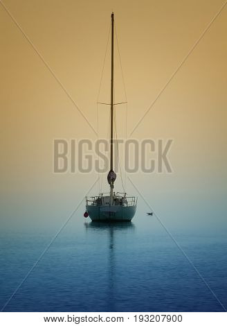 A yatch on calm waters and a seagull