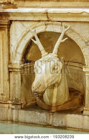 Deer head. Palermo fontain Pretoria decorative element, Italy