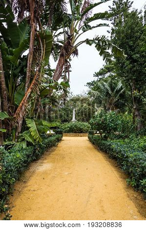 green park alley Cadiz, Spain. Genovese garden