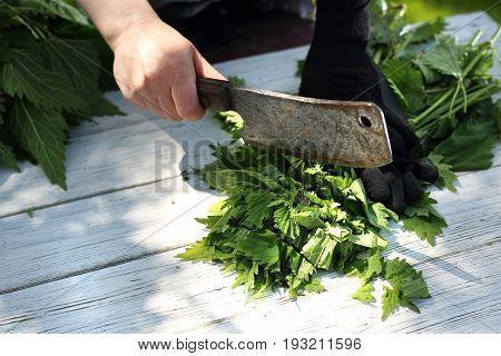 Woman chopping nettle leaves.Green nettle in the kitchen.