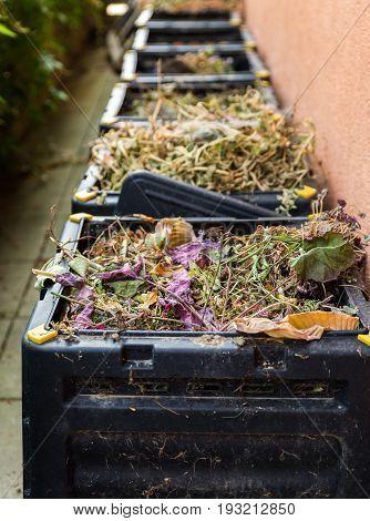 Compost, garbage, kitchen waste in black bin.