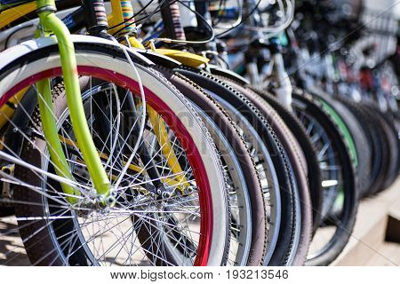 Bicycles in the park waiting for new clients. Bicycles for rent.