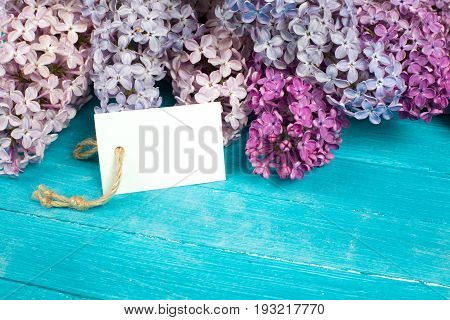 The beautiful lilac on a wooden background. Studio shot