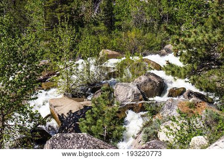 Rushing Waters From Snow Melt In Mountain Stream