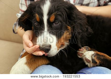 Young woman with cute funny dog at home, closeup