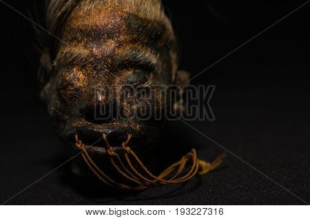 A shrunked human head from ecuador over a dark background.