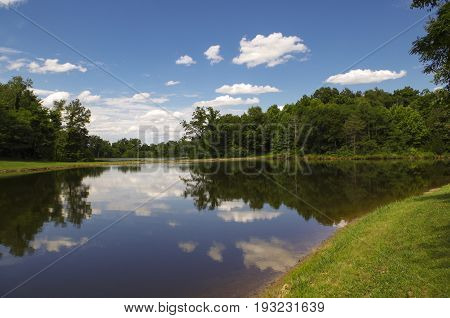 Landscape of a treeline and a reflection on a lake.