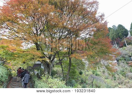 KYOTO JAPAN -NOV 22 2015: Tourists at Yoshimine-dera temple in autumn. Yoshiminedera is a temple of the Tendai sect of Japanese Buddhism located in Kyoto