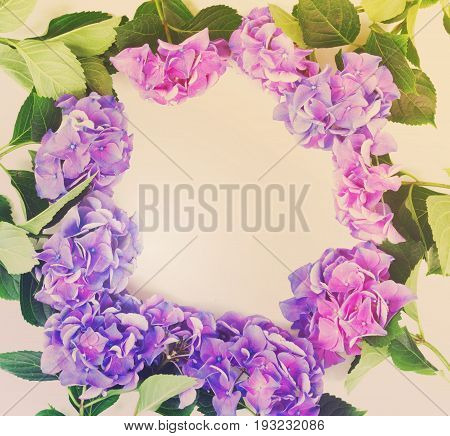 blue and violet hortensia flowers frame pappern on white background, retro toned