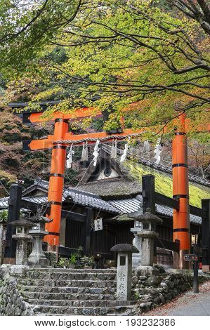 Giant torii gate at Shinto shrine in autumn Arashiyama Kyoto Japan