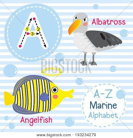 Cute children sea alphabet flashcard of funny marine animal cartoon A letter tracing for kids learning English vocabulary vector illustration.