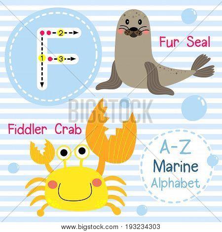 Cute children sea alphabet flashcard of funny marine animal cartoon F letter tracing for kids learning English vocabulary vector illustration.