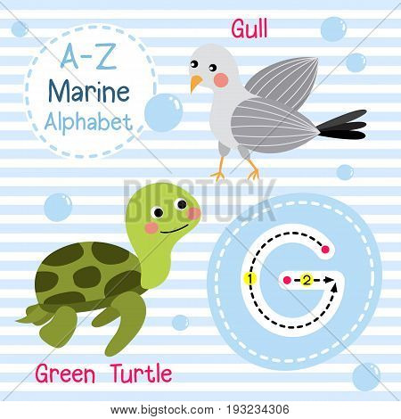 Cute children sea alphabet flashcard of funny marine animal cartoon G letter tracing for kids learning English vocabulary vector illustration.