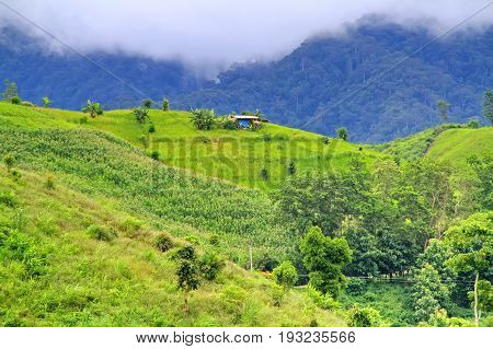 Beautiful landscape of hovel on mountains mist in the north of Thailand