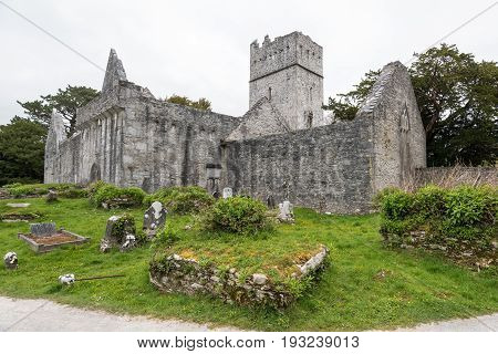 Muckross Abbey And Cemetery
