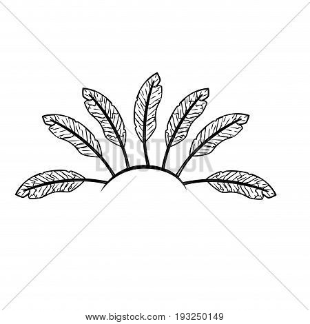line beauty diadem of feathers design decoration vector illustration