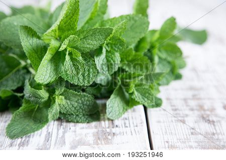 Mint. Bunch Of Fresh Green Organic Mint Leaf On Wooden Table Closeup. Selective Focus.