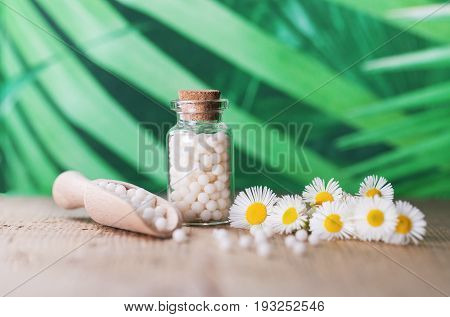 Herbal remedy alternative medicine. Chamomile flowers and homeopathic medication