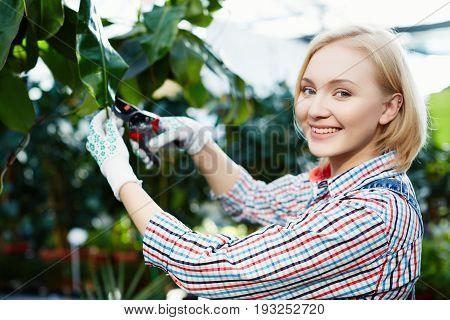 Plants Care Concept