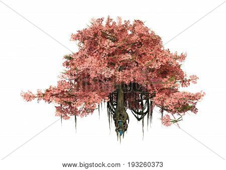 3D Rendering Anciant Tree On White