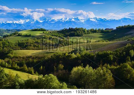 View Of The Vineyards And Hills Of Langa Piemonte Italy