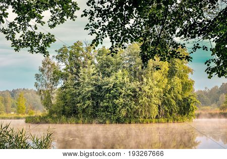 Morning landscape on the lake. Islet with trees on the lake.