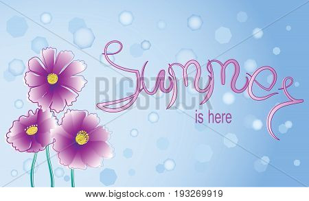 Pink flowers and signature Summer is here. Background image with space for text. Design for poster, greeting cards.