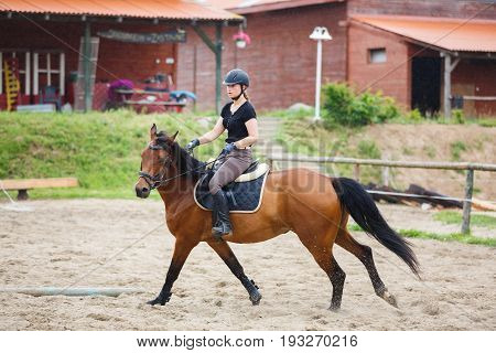 Horse rider is training in the arena outdoors