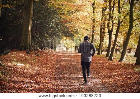 Rear View Of Mature Man Running Through Autumn Woodland