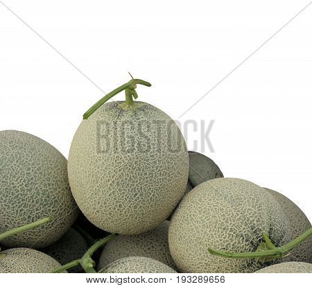 Melon or Cantaloupe fruit new harvest plucked from the garden isolated on white background with clipping path.