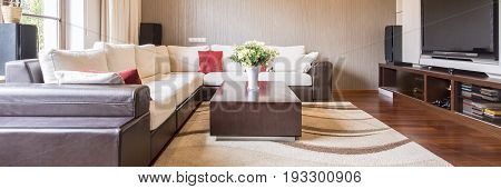 Large sofa in bright modern living room