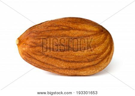 One dry apricot kernel isolated on white background close up