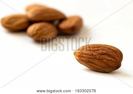 One apricot kernel on white surface with blurred apricot kernels on background close up